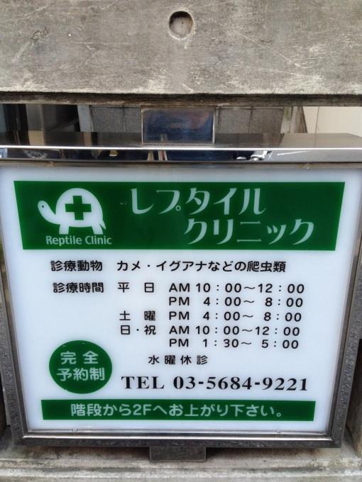 """""""Reptile Clinic"""""""