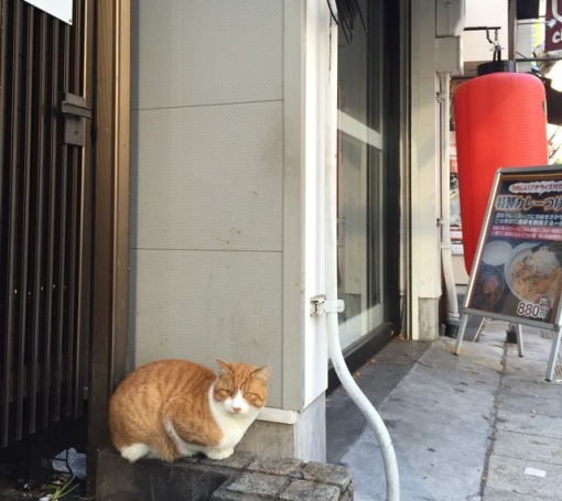 Very close to Hotel Dojima in a busy commercial district of Osaka.