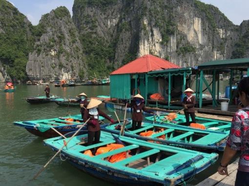 "The ""bamboo boats"""