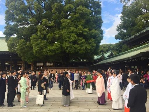 A wedding underway
