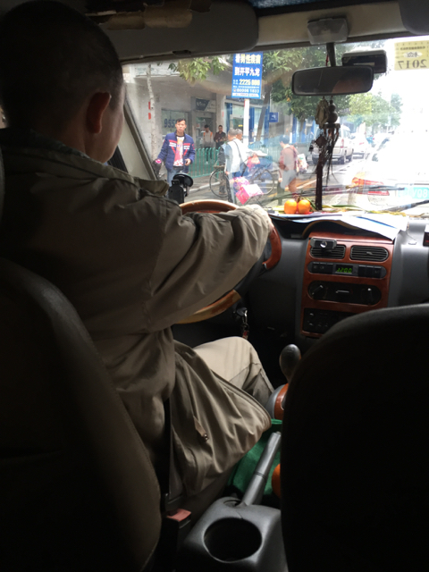 My driver! I was initially sitting in the back but after the first stop, asked to be seated in the front for a better view.